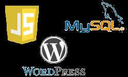 Inject JavaScript code WordPress