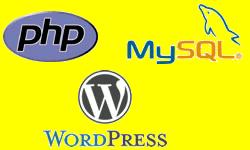 Inject PHP code WordPress